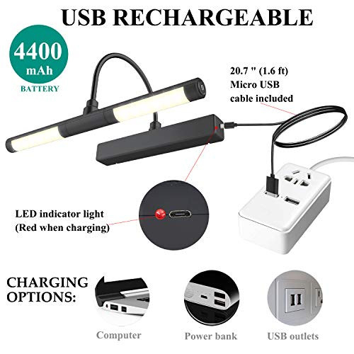 BIGMONAT Rechargeable Picture Light for Painting with